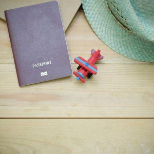 法国留学签证服务
